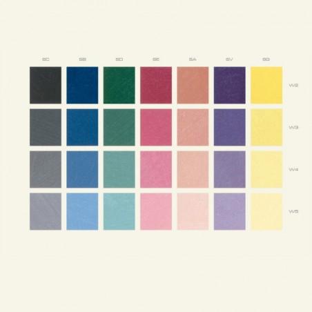 Color White Paint 2040